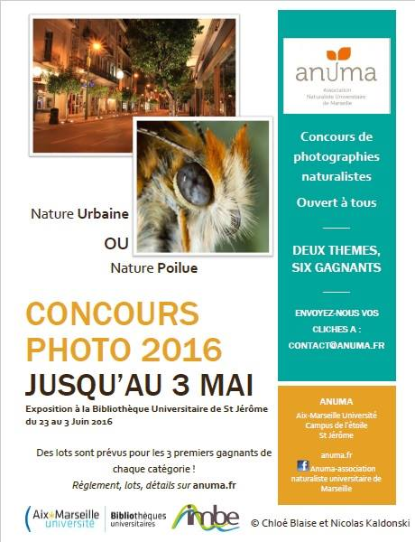 Flyer concours photo 2016_2